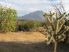 san-francisco-to-san-miguel-mexico-2009-353-600