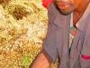 Addis2Somaliland22