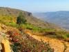 Addis2Somaliland30